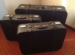 113 Koffer Pagode Luggage Hepco Repro